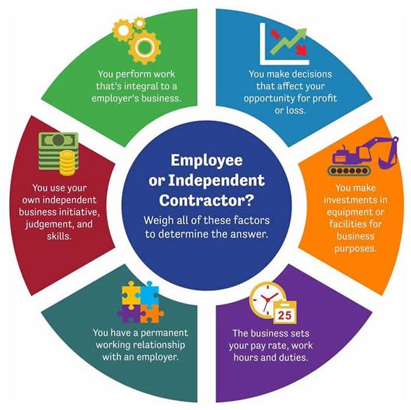 infographic_employee_contractor-